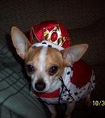 - Maddox in his king costume, on Halloween day.